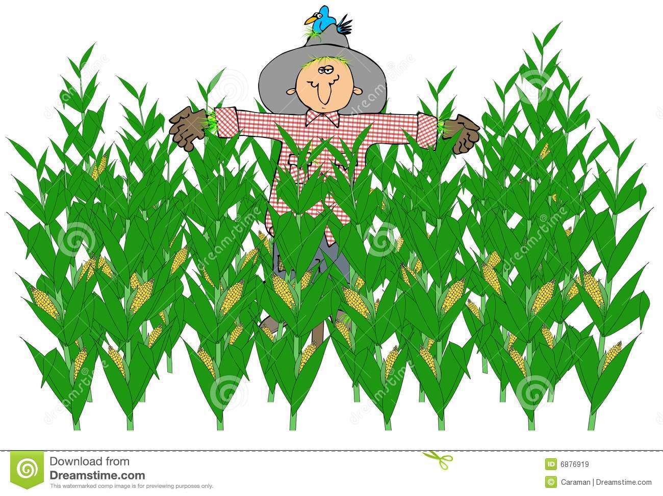 Cornfield clipart corn maze Art Art Corn Maze size