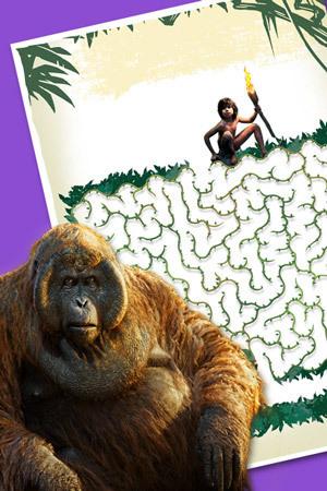 Maze clipart jungle #7