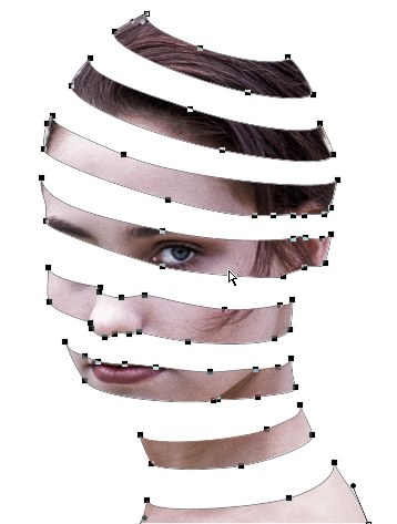 Drawn ribbon spiral The of Dr face technique