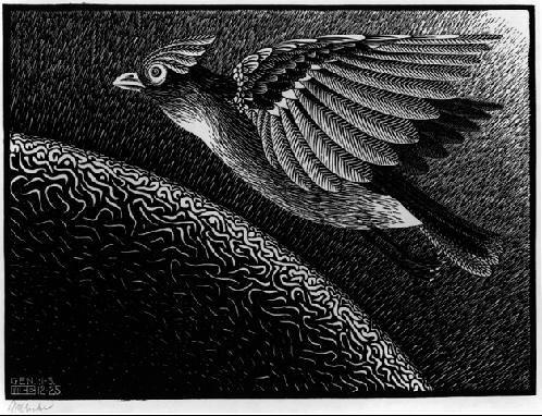 M.c.escher clipart earth Of Artist: best M about