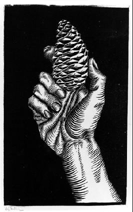 M.c.escher clipart finger Pinterest images on C M