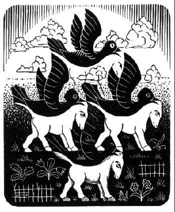 M.c.escher clipart king And Pinterest images M Horses