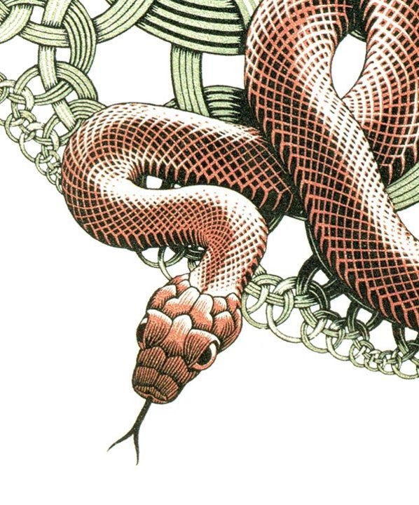 M.c.escher clipart snake Images Woodcut Three Pinterest Orange