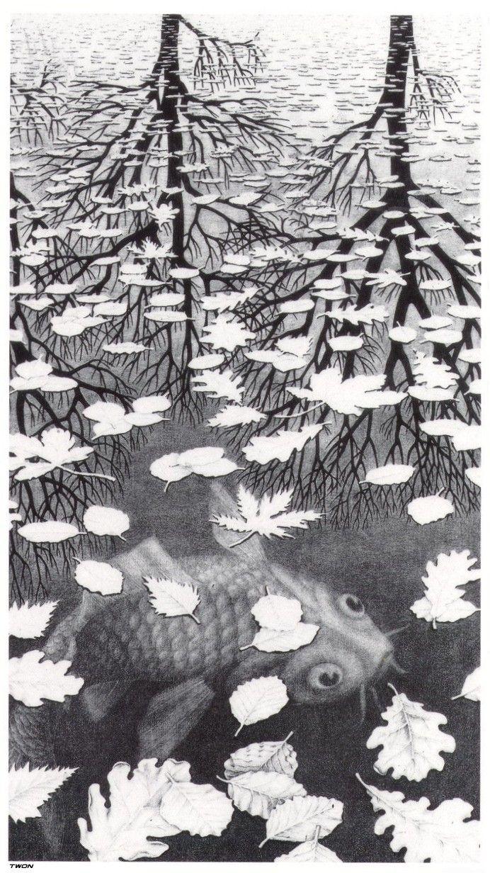 M.c.escher clipart starfish 29 Pinterest C Escher about