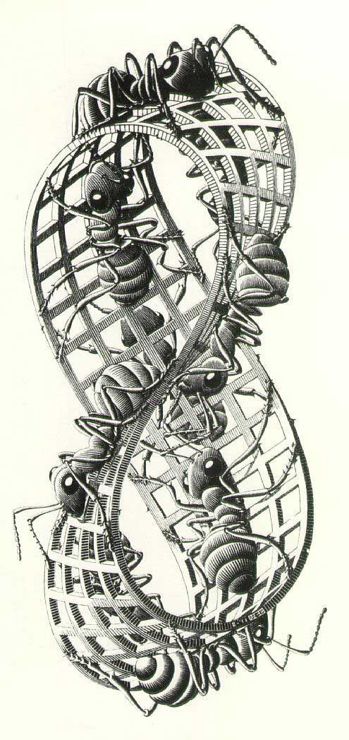 M.c.escher clipart water 1972) images Pinterest Ants Cornelis