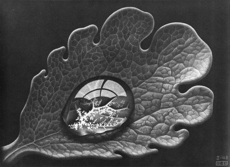 M.c.escher clipart water Escher M and on on