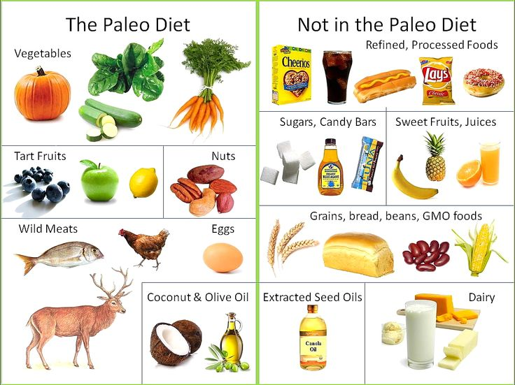 Grain clipart healthy meal Best Paleo Stone high disease