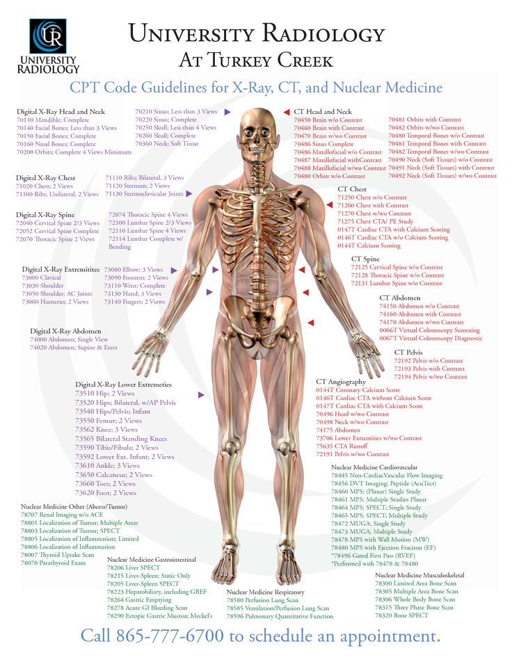 Medicinal clipart medical exam Careers Creek At ideas Radiology