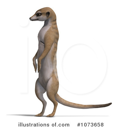 Meerkat clipart Illustration Royalty Clipart by Ralf61