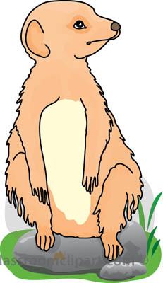 Meerkat clipart Free Meerkat Images Clipart Panda