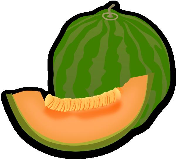 Honeydew clipart Melon 3 melon  photo