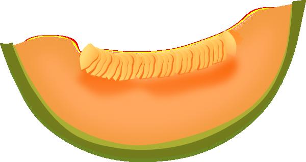 Cantaloupe clipart cartoon Online  Download Cantaloupe art