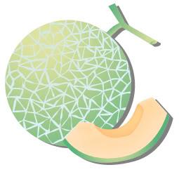 Melon clipart Download Clip on  Clipart