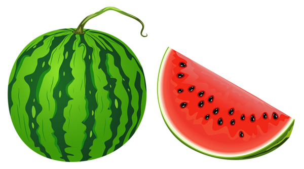 Watermelon clipart single vegetable Watermelon Photos Watermelon Art clipart