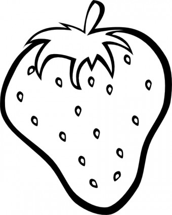 Watermelon clipart outline Strawberry Pineapple Clipart clipart Clipart