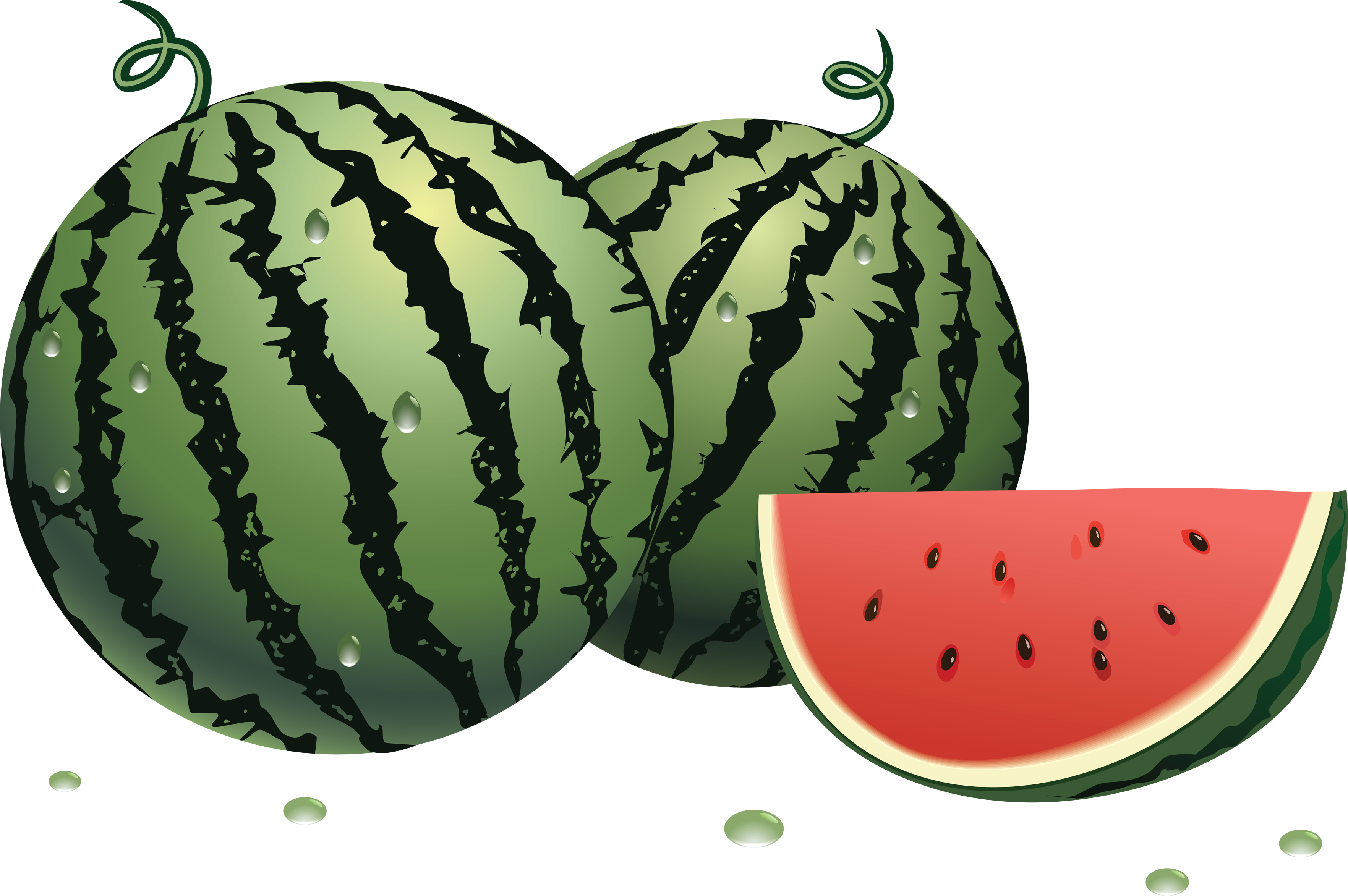 Watermelon clipart single vegetable Images watermelon download Watermelon free