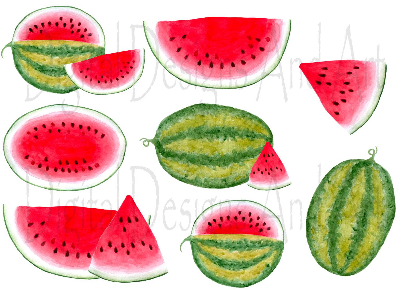 Melon clipart watermelon fruit Clipart  Watercolor Watermelon Watermelon