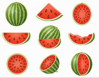 Melon clipart watermelon fruit Art Watermelon Etsy Illustration Fruits