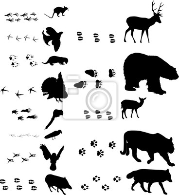 Mouse clipart footprint #10