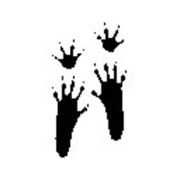 Mouse clipart footprint #4