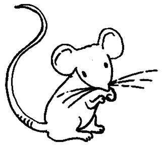 Drawn rodent computer mouse Clipart mouse black white clipart