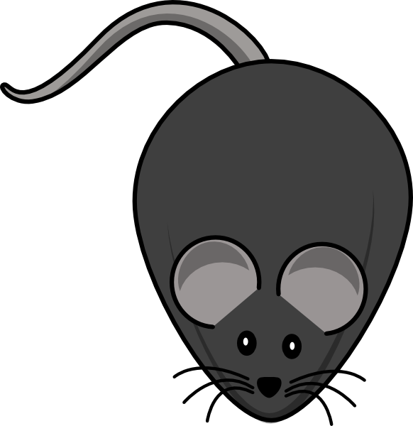 Rat clipart mouse animal #1