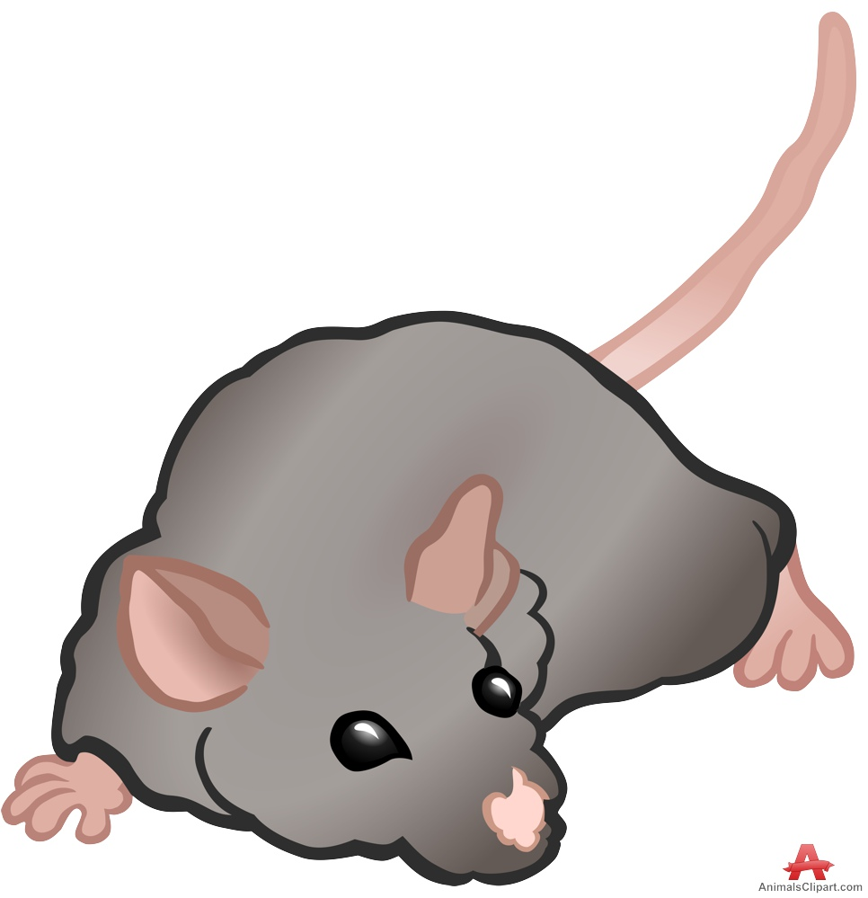 Rodent clipart mouse animal #4