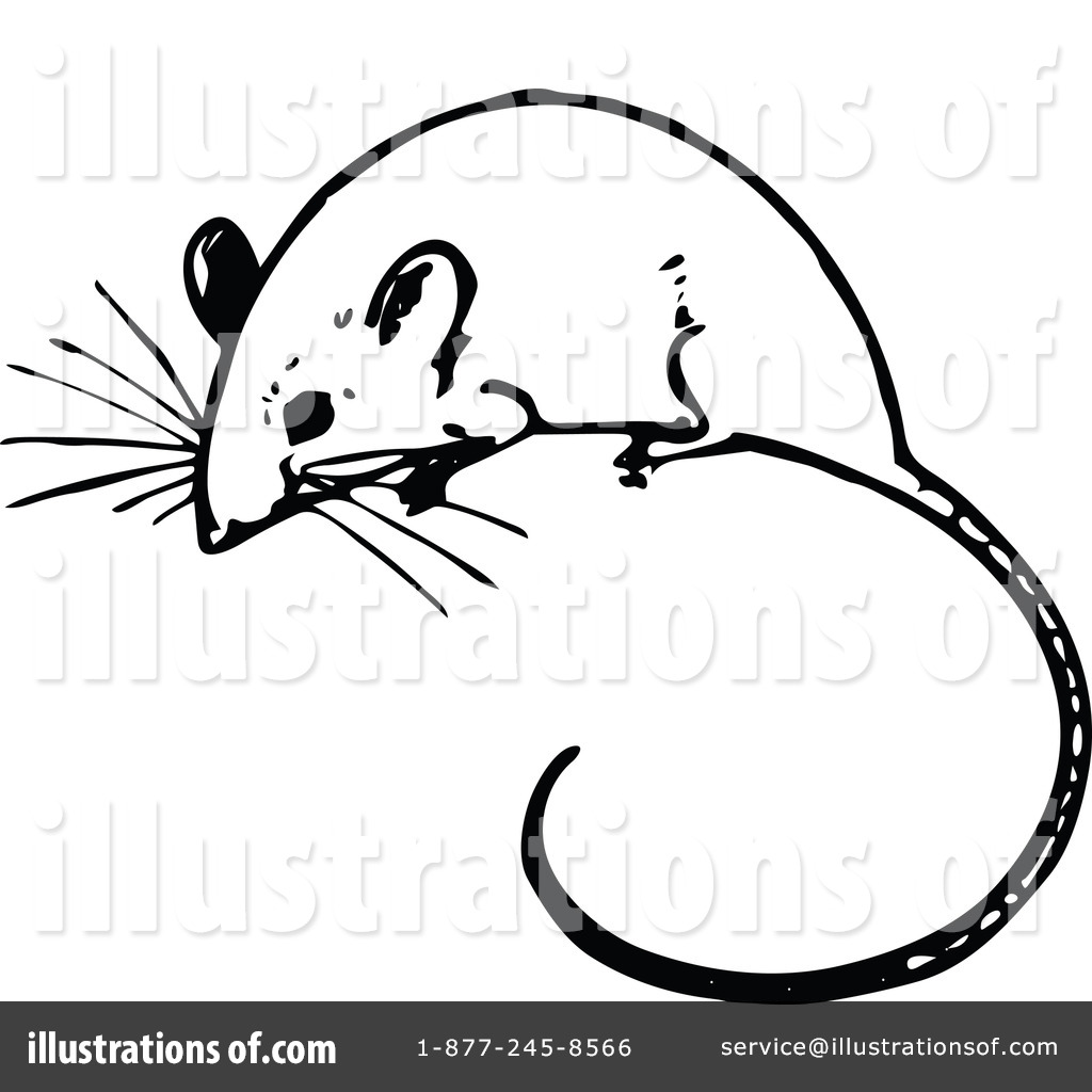 Rodent clipart mouse animal #6