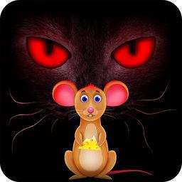 Xhavit Cat Rat Mustafa by