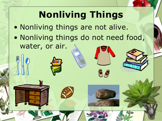 Photography clipart non living A Parts Nonliving plant of