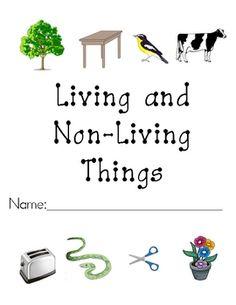 Microsoft clipart non living Sort living Science  Living/Non