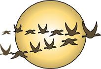 Migration clipart Migration Quiz Migration NatureWorks