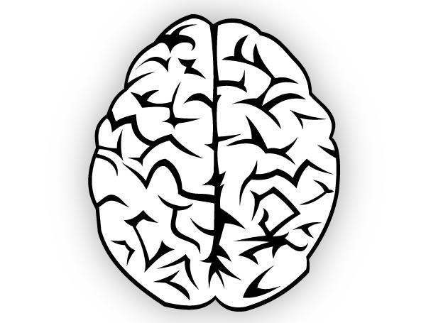Drawn brains clip art Photos Brain Free Free Free