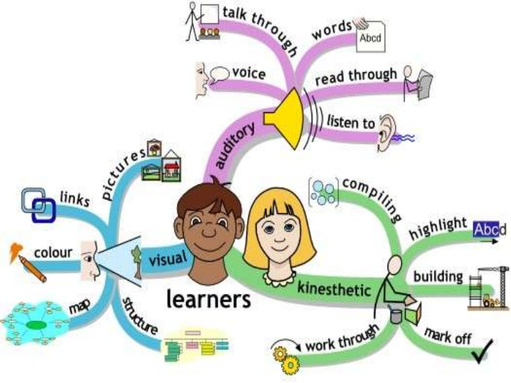 Mind clipart learning style Pevita Style Learning Essay Essay}