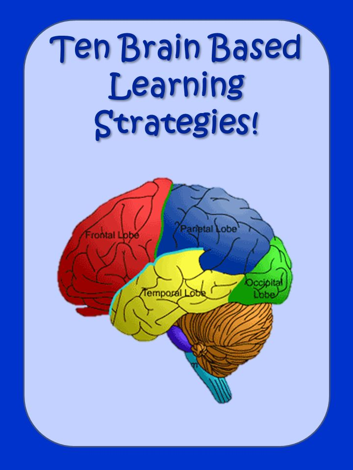 Mind clipart learning style Learning best on Based images