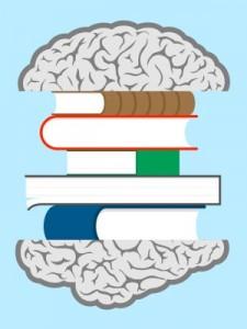 Brains clipart long term memory Memory Long Term Long Types