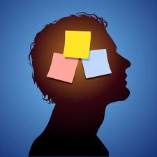 Brains clipart long term memory Clipart Long Memory cliparts Term