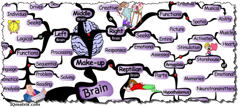 Mind clipart part the brain About Your Habits Here's Shaping