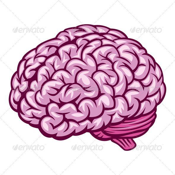 Drawn brains pink brain 102 Pinterest best on Brain