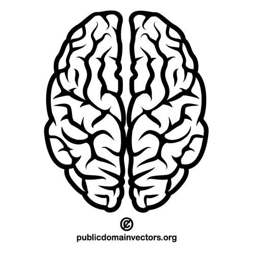 Drawn brains public domain Art clipart Brains Black Clip