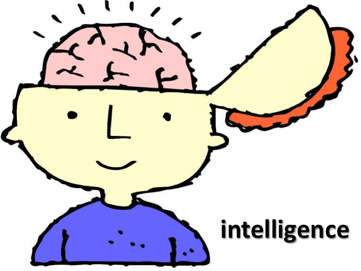 Mind clipart visual learning Intelligence Insightful on 9 factors: