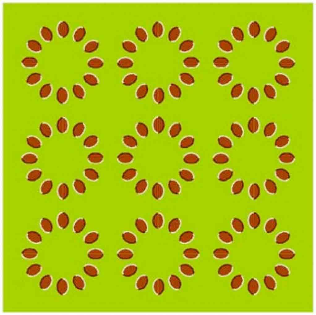 Optical Illusion clipart brain game #1