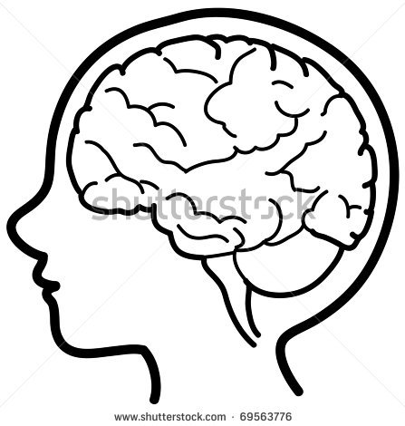 Mindteaser clipart head brain Free Images human%20brain%20clipart Panda Clipart