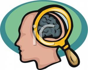 Mindteaser clipart head brain Kids Bay Human For Clipart