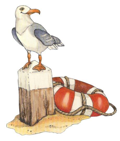 Sea Bird clipart robin #3