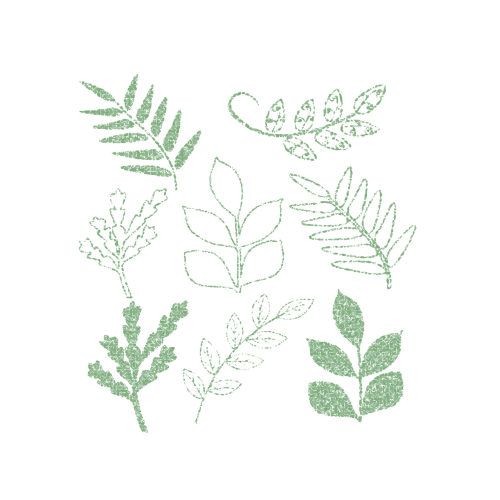 Mint clipart green leave Clipart Scrapbooking Digital  Graphic