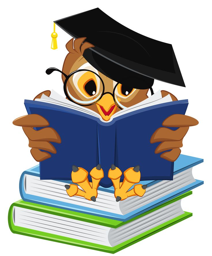 Covered clipart school book With Owl ideas 25+ PNG