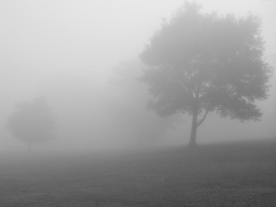 Mist clipart black and white #8