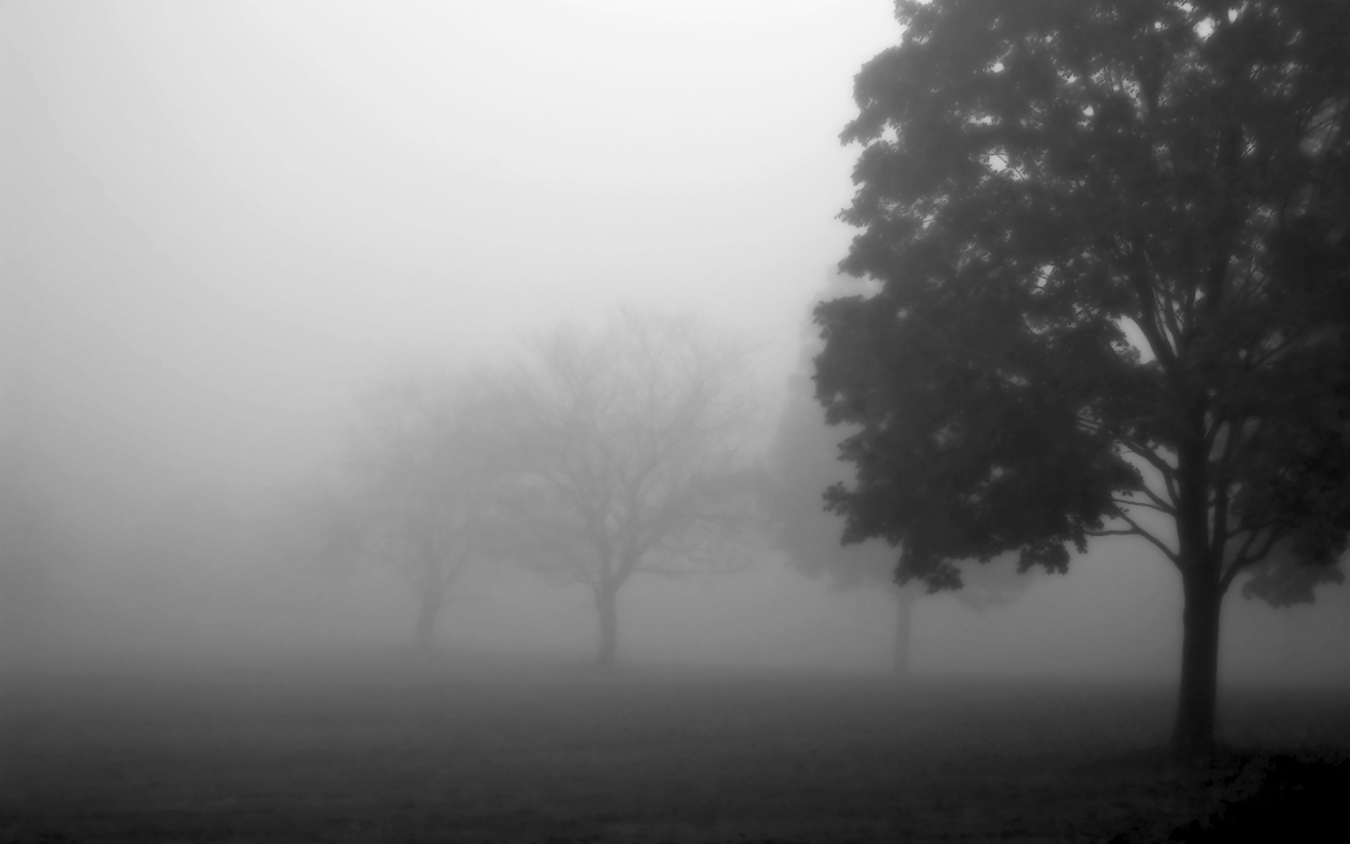Mist clipart black and white #2