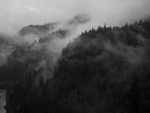 Mist clipart black and white #1